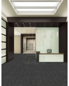 New Shaw 24x24 Thought Pattern Carpet tile Multiple Color Options