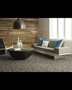 """New Shaw 24"""" Warp It Commercial Carpet Tiles"""